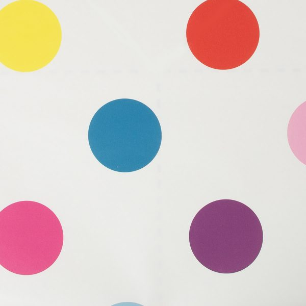 100103 DOTTY MULTI BRIGHT