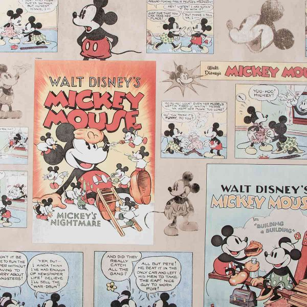70-242 MICKEY VINTAGE EPISODE