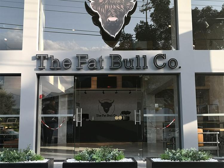Fat Bull 1
